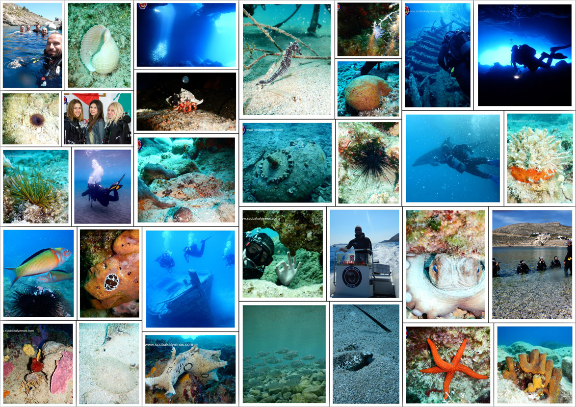 collage-gallery